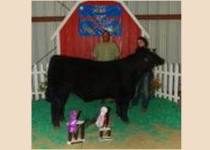 12-reserve-grand-champion-market-steer-grand-champion-born-and-raised-jackson-county-fair-macie-ludtke