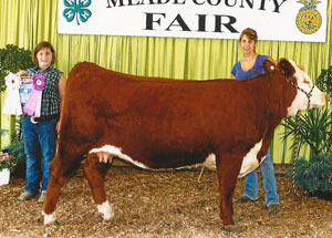 12-supreme-champ-bred-and-owned-heifer-kentucky-state-alex-richardson