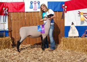12-supreme-champion-ewe-clermont-county-fair-maria-thoms
