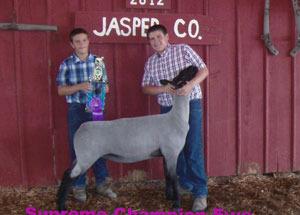 12-supreme-champion-ewe-jasper-county-fair-zach-wamsley