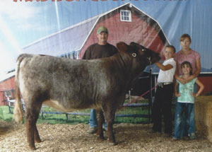 12-supreme-champion-prebred-heifer-madison-county-fair-macy-burchett