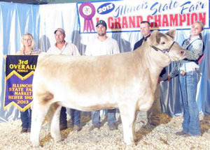 13-3rd-overall-market-heifer-illinois-state-fair-maddey-tebbe