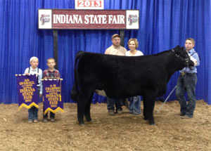 13-4th-overall-heifer-and-champion-simm-solution-hefier-indiana-state-fair-bryce-hayden