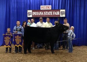 13-4th-overall-steer-and-champion-chiania-steer-indiana-state-fair-brooke-hayden
