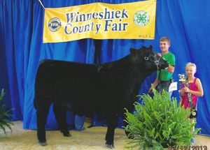13-Champion-Heavy-Weight-Steer-Winneshiek-County-Fair-Ryan-Bullerman