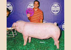 13-Champion-Landrace-Gilt-Michigan-Livestock-Expo–Austin-Pueschel
