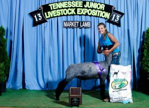 13-Champion Natural Color Market Lamb – Tennessee Junior Livestock Expo – Brooklyn McClard