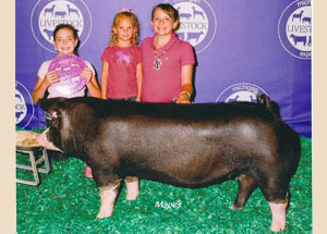 13-Champion-Poland-China-Gilt-Michigan-Livestock-Expo-Madison-Ater