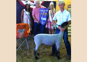 13-Grand-Champion-Market-Lamb-Cabell-County-Fair-Robbie-Holley