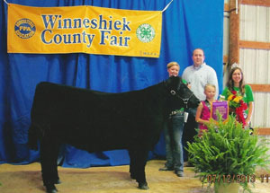 13-Grand-Champion-Steer-Winneshiek-County-Fair-Chelsea-Bullerman