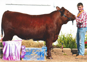 13-best-of-show-steer-ashtabula-co-ryan-johnson