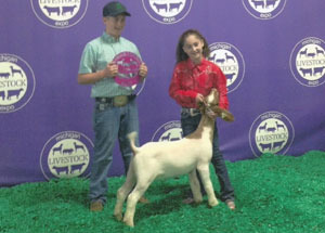 13-champ-div-1-goat-michigan-livestock-expo-karlee-shiery