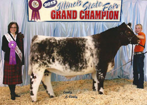 13-champ-shorthorn-steer-illinois-state-peyton-richie