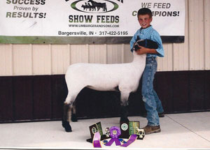 13-champion-breeding-ewe-gallia-county-william-hendrickson