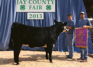 13-champion-breeding-heifer-jay-county-tucker-pearson