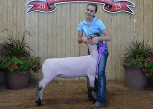 13-champion-brockle-market-lamb-ohio-state-fair-meghann-winters