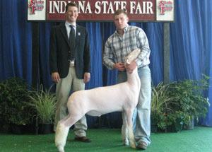 13-champion-dorsett-and-6th-overall-indiana-state-fair-kyle-garringer
