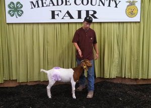 13-champion-full-blood-0-3-meade-county-fair-zachary-mills