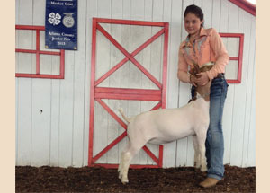 13-champion-market-goat-athens-county-fair-taylor-carr