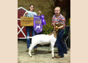 13-champion-market-goat-miegs-county-fair-jessica-parker