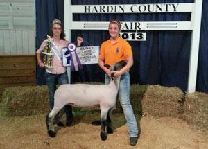 13-champion-market-lamb-hardin-county-fair-maddie