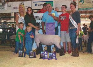13-champion-market-lamb-shiawassee-county-fair-lindsay-richmond