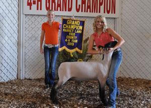 13-champion-market-lamb-vigo-county-fair-rachel-sivertson