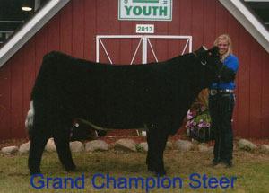 13-champion-market-steer-gradiot-county-fair-taylor-bolinger