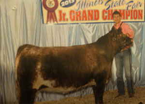 13-champion-senior-division-shorthorn-heifer-illinois-state-fair-zachary-fanning