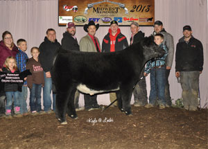13-champion-shorthorn-plus-points-steer-ohio-best-program-kaden-frey