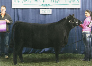 13-champion-simmental-heifer-west-virginai-state-fair-lindsey-miller