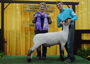 13-champion-slick-sheared-hampshire-ram-naile-joel-flanders