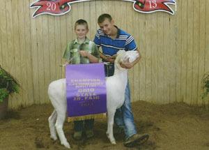 13-champion-slick-short-horn-dorset-ewe-ohio-state-fair-jr-breeding-show-jackson-crawford