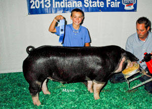 13-class-winner-indiana-state-fair-reserve-poland-barrow-team-purebred-eastern-regional-kai-warren