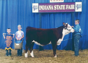 13-division-1-champion-hereford-heifer-indiana-state-fair-luke-dixon