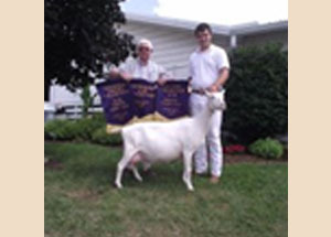 13-grand-and-supreme-senior-dairy-doe-elkhart-county-fair-brian-pluimer
