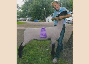 13-grand-champ-ewe-livingston-co-maddison-stark