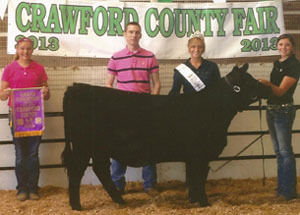 13-grand-champ-heifer-crawford-co-carley-travis