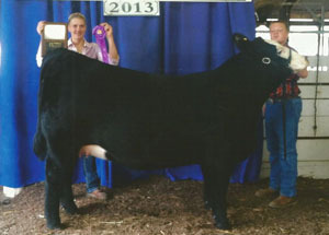 13-grand-champ-heifer-hamilton-co-luke-herr