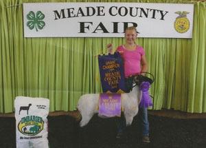 13-grand-champion-4h-and-ffa-market-lamb-meade-county-fair