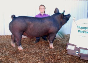 13-grand-champion-delaware-county-fair-lindsey-dore