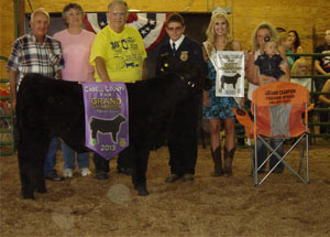13-grand-champion-feeder-steer-cabell-county-fair-zachary-call