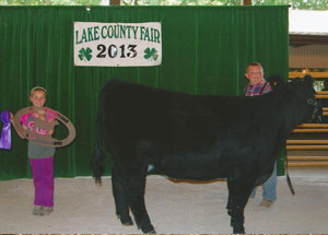 13-grand-champion-heifer-lake-county-4h-fair-zach-hayden