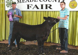 13-grand-champion-heifer-meade-county-fair-cody-haught
