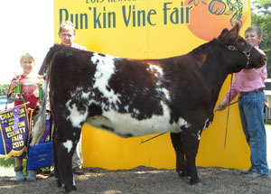 13-grand-champion-heifer-shorthorn-newton-county-fair-hayden-berenda