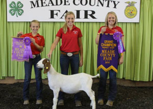 13-grand-champion-market-goat-m-eade-county-fair-whitney-fackler
