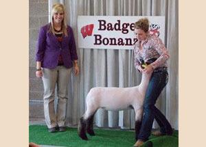 13-grand-champion-market-lamb-badger-bonanza-mckenna-kent