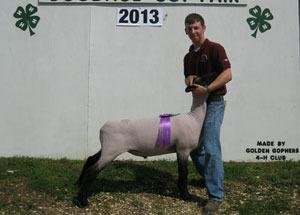 13-grand-champion-market-lamb-goodhue-county-fair-tanner-borgschatz