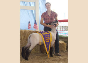 13-grand-champion-market-lamb-grand-champion-pen-of-two-market-lambs-reserve-champion-born-and-raised-market-lamb-logan-county-fair-jessica-skimor