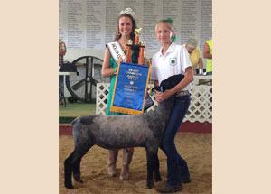 13-grand-champion-market-lamb-jackson-county-jr-fair-brianna-haga